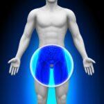 תסמינים וטיפול טבעי בערמונית מוגדלת